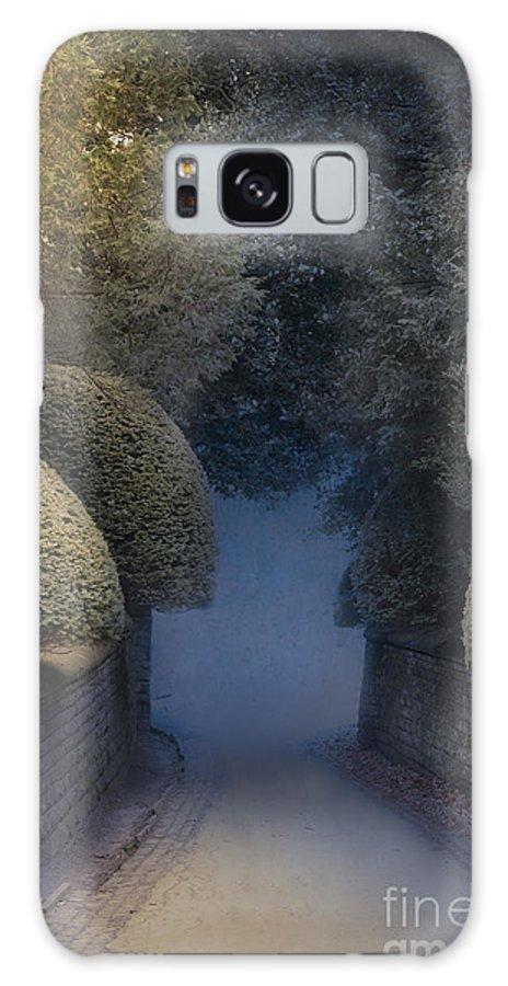 Street Galaxy S8 Case featuring the photograph Illumiinated Victorian Street Light by Lee Avison