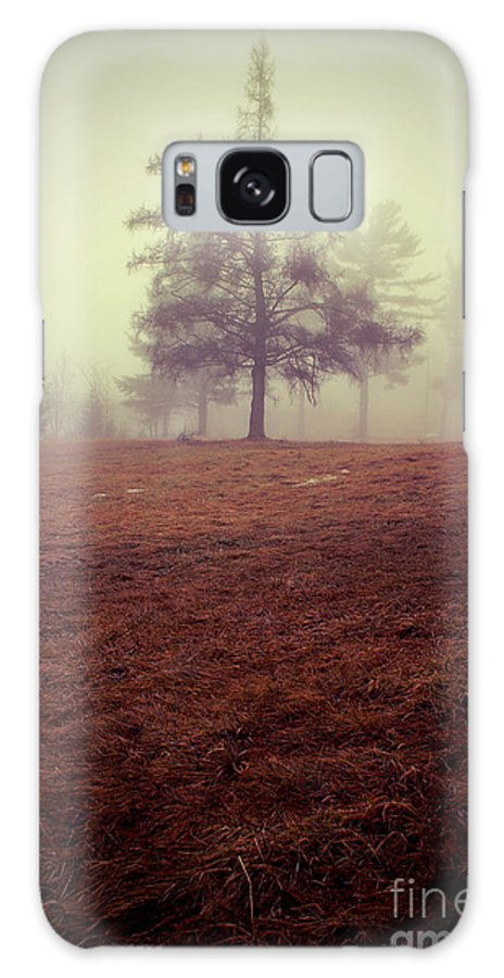 Tree Galaxy Case featuring the photograph Imperfection by Aimelle