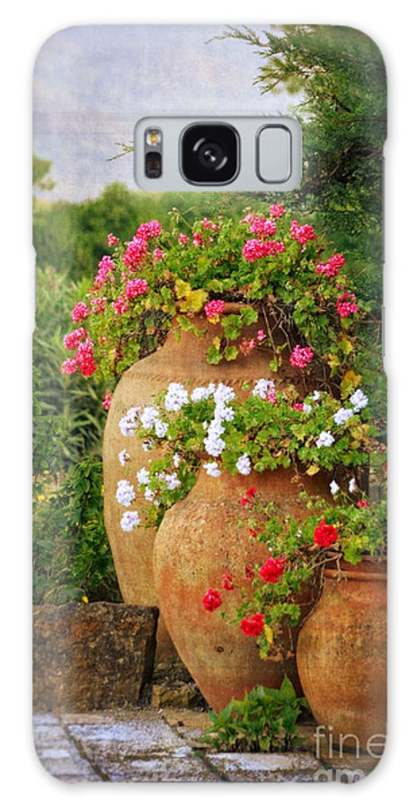 Terracotta Pots Galaxy S8 Case featuring the photograph In A Portuguese Garden - Photo by Mary Machare