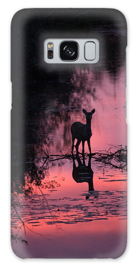 Deer Galaxy S8 Case featuring the photograph In The Creek by Linda Kerkau