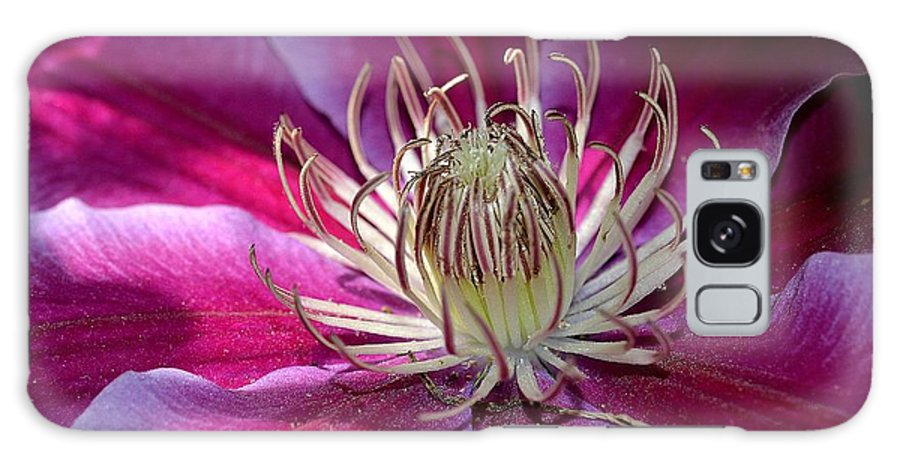 Clematis Galaxy S8 Case featuring the photograph In The Glow by Michelle Ayn Potter