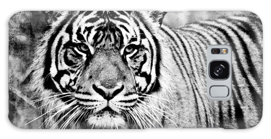 Tiger Galaxy S8 Case featuring the photograph In The Midst Of A Tiger II by Athena Mckinzie