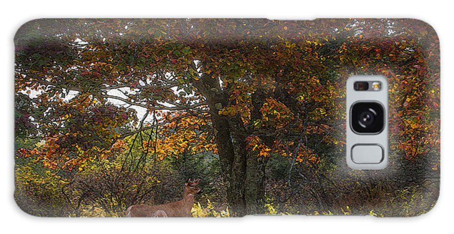 Ron Jones Galaxy S8 Case featuring the photograph Indian Summer by Ron Jones