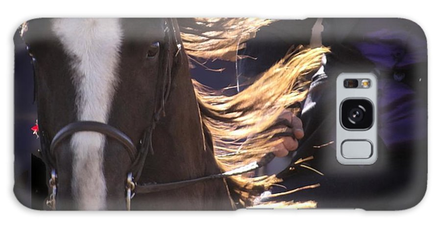 Equine Art Prints For Sale Galaxy S8 Case featuring the mixed media Inner Music by Ernestine Manowarda