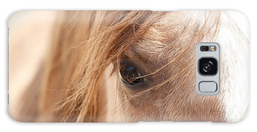 Horses Galaxy S8 Case featuring the photograph Into My Soul by Athena Mckinzie