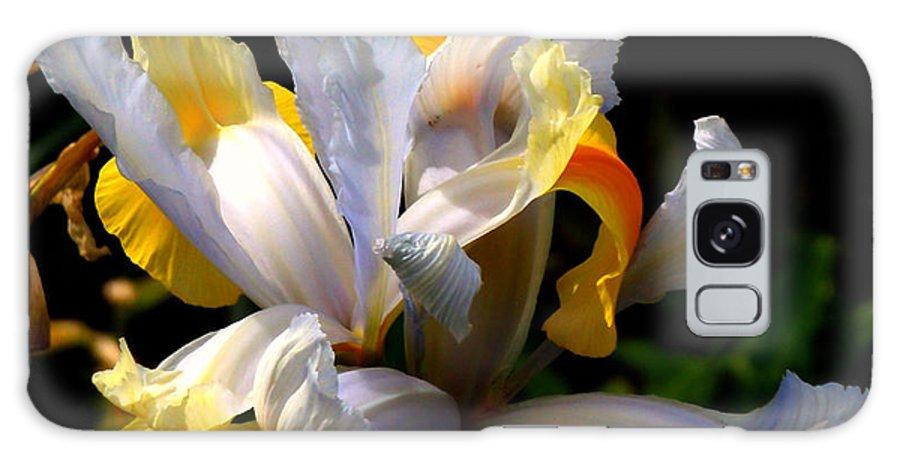 Iris Galaxy S8 Case featuring the photograph Iris by Rona Black