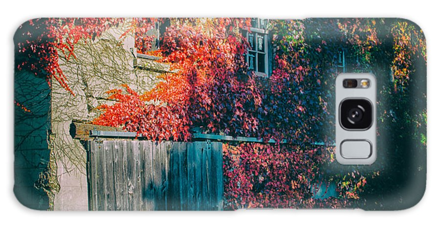 Derelict Galaxy S8 Case featuring the photograph Ivy Covered Barn by James Canning