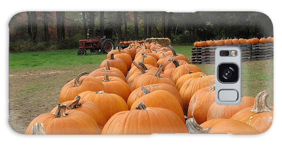 Pumpkins Galaxy S8 Case featuring the photograph Jack O Lanterns In Waiting by Barbara McDevitt