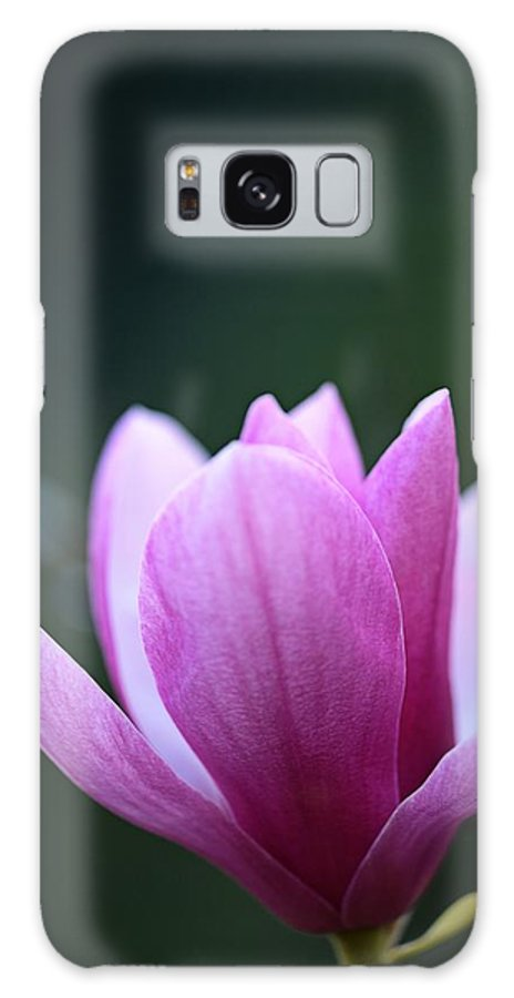 Japanese Galaxy Case featuring the photograph Japanese Magnolia by Keith Gondron
