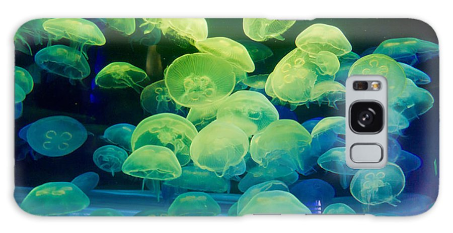Jellyfish Galaxy S8 Case featuring the photograph Jellyfish 6 by Bernard Barcos