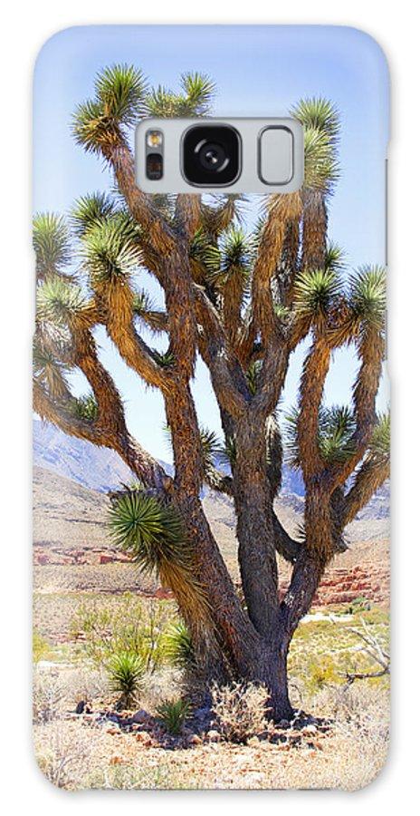 Joshua Tree Galaxy S8 Case featuring the photograph Joshua Tree by Mike McGlothlen