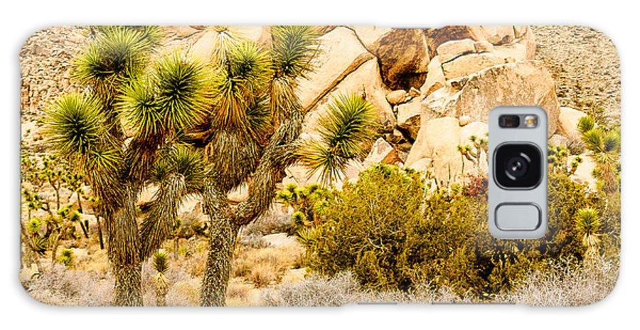 California Galaxy S8 Case featuring the photograph Joshua Tree National Park Skull Rock by Bob and Nadine Johnston