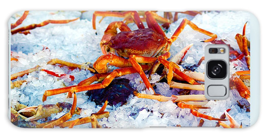 Crab Galaxy S8 Case featuring the photograph Keep'n The Kool by Ron Haist