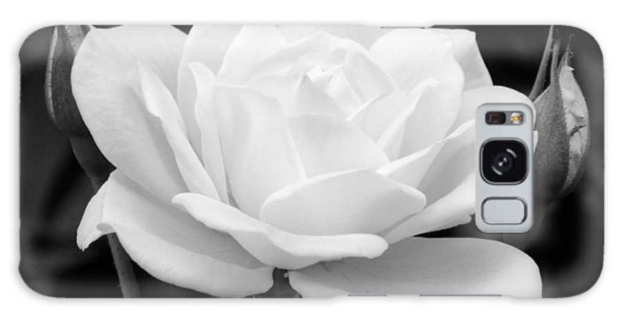 White Rose Galaxy S8 Case featuring the photograph La Rosa In Black And White by Randal Higby