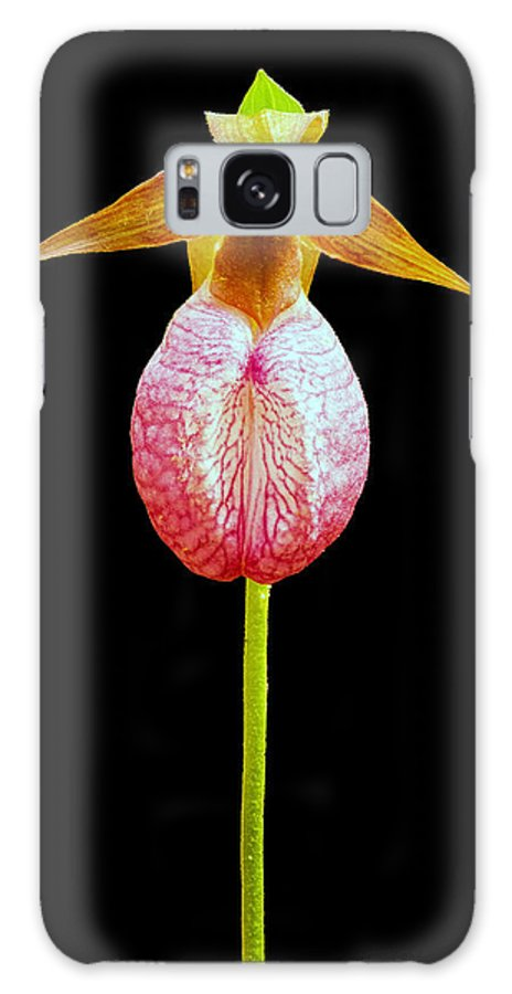 Lady Slipper Galaxy S8 Case featuring the photograph Lady Slipper by Boyd E Van der Laan