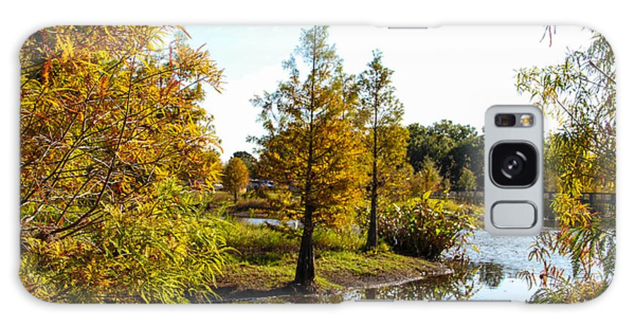 Lake Howard Galaxy S8 Case featuring the photograph Lake Howard - Fall Color In The Park by RJ Powell Studios
