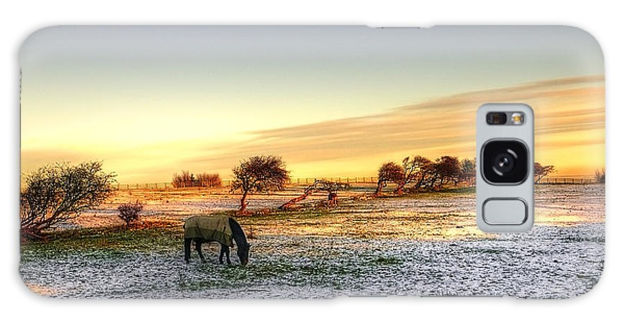 Tree Galaxy S8 Case featuring the photograph Landscape And Horse by Svetlana Sewell