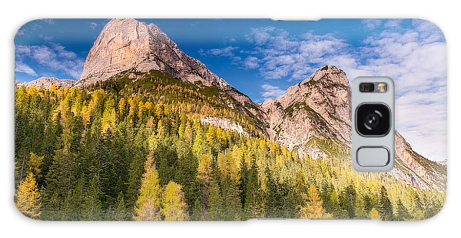 Cortina Galaxy S8 Case featuring the photograph Larch On A Slope by Michael Blanchette