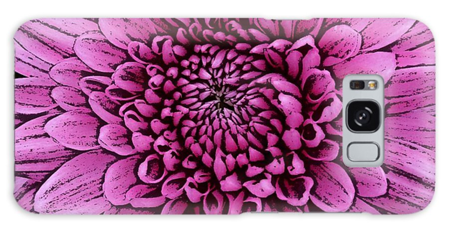 Pink Dahlias Galaxy S8 Case featuring the photograph Large Pink Dahlia 2 by Joan-Violet Stretch