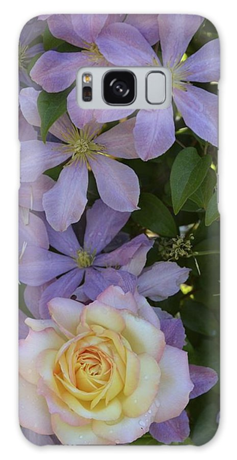Rose Galaxy S8 Case featuring the photograph Lavender Clematis Rose by William Hallett