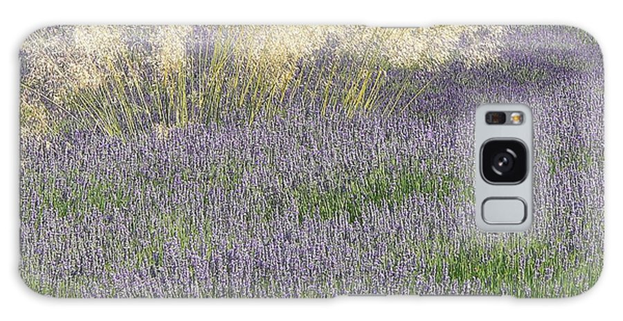 California Galaxy S8 Case featuring the photograph Lavender by Steve Ondrus