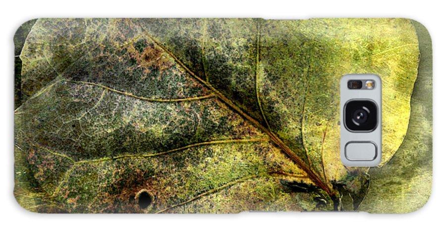 Digital Galaxy S8 Case featuring the photograph Leaf #1 by Alfredo Gonzalez