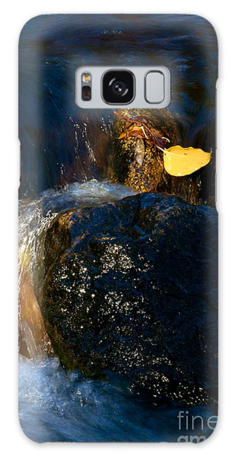 Nature Galaxy S8 Case featuring the photograph Leaf Bridge Two by Vinnie Oakes