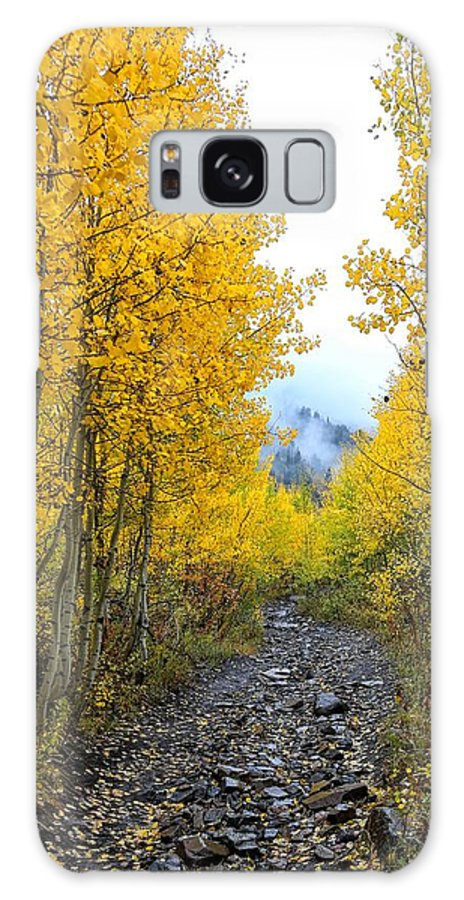 Autumn Galaxy S8 Case featuring the photograph Leaf Covered Rocky Road by Mitch Johanson