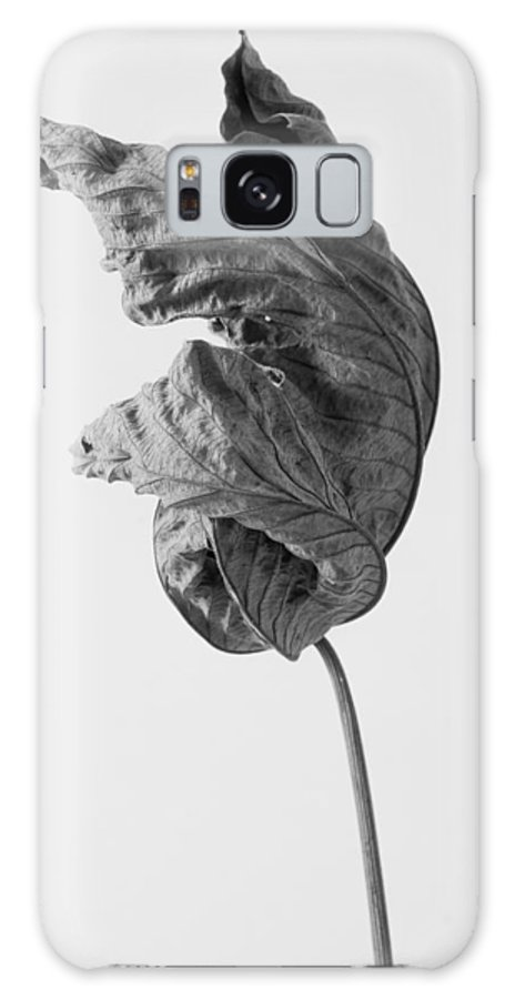 Leaves Galaxy S8 Case featuring the photograph Leaves After Life - Twelve by Widarto Adi