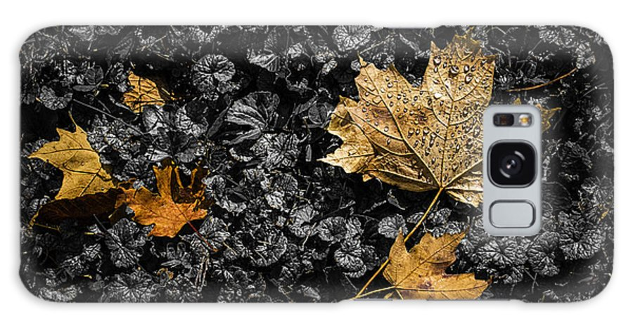 Art Galaxy Case featuring the photograph Leaves On Forest Floor by Tom Mc Nemar