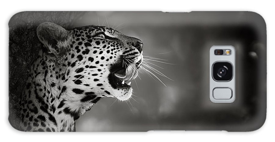 Leopard Galaxy S8 Case featuring the photograph Leopard Portrait by Johan Swanepoel