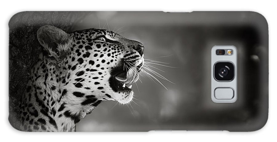 Leopard Galaxy Case featuring the photograph Leopard portrait by Johan Swanepoel
