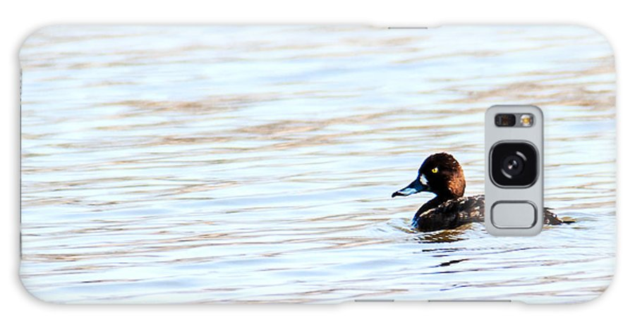 Wildlife Galaxy S8 Case featuring the photograph Lesser Scaup by Edward Peterson