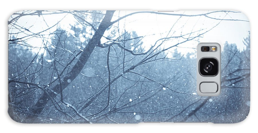 Cyanotype Galaxy S8 Case featuring the photograph Let It Snow by Cheryl Baxter