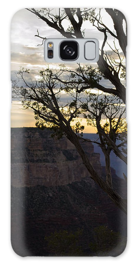 Landscape Galaxy S8 Case featuring the photograph Life by Jonathan Smith