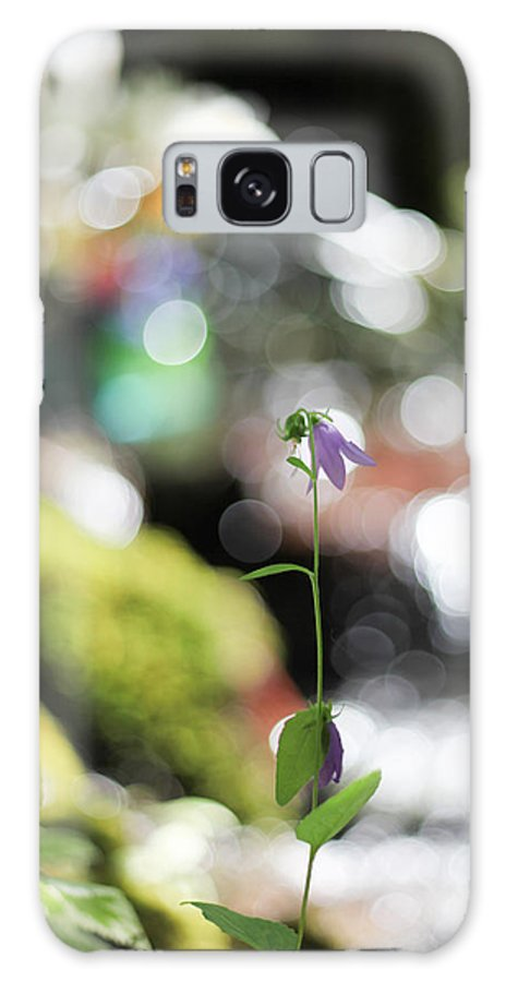 Flower Galaxy S8 Case featuring the photograph Light Show by Aaron Aldrich