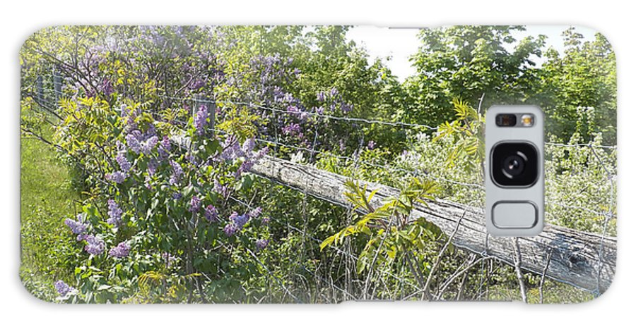 Lilacs Galaxy S8 Case featuring the photograph Lilac Fence IIi by Corinne Elizabeth Cowherd