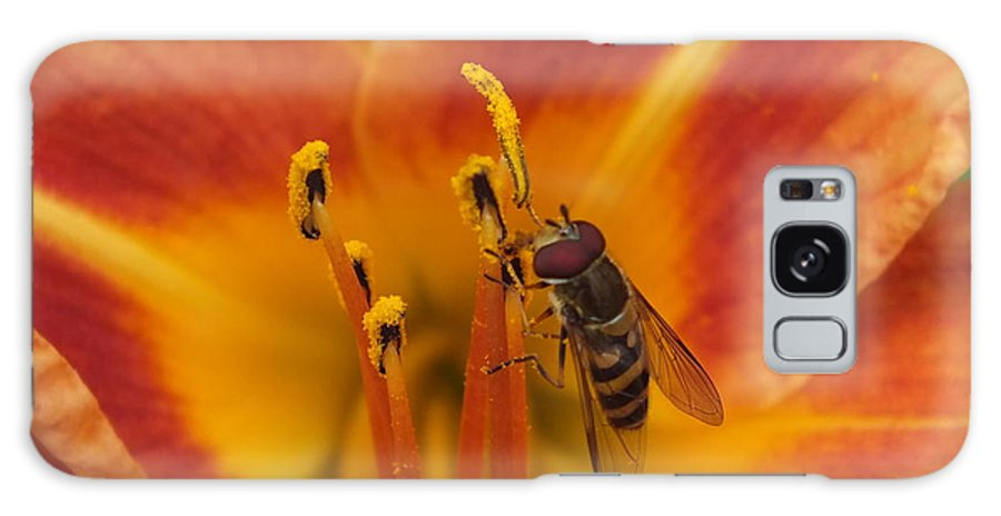 Flower Images Galaxy S8 Case featuring the photograph Lily And Bee by Gene Cyr