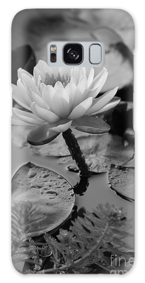 Black And White Galaxy S8 Case featuring the photograph Lily Bw by Carolyn Stagger Cokley