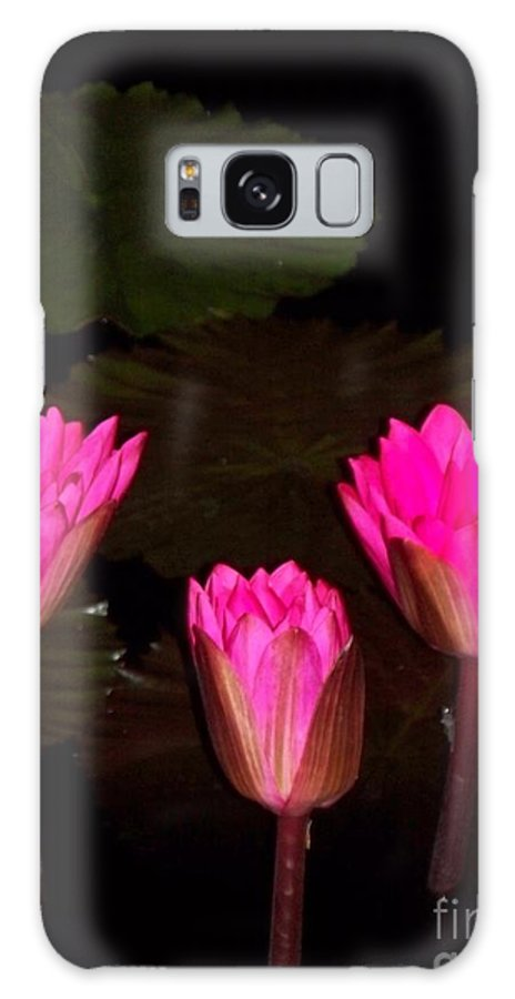 Water Lilies Galaxy S8 Case featuring the photograph Lily Night Time by Eric Schiabor