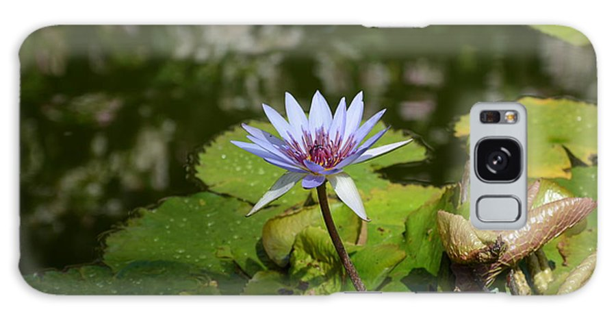 Pedal Galaxy S8 Case featuring the photograph Lily Pad Flower by William Hallett