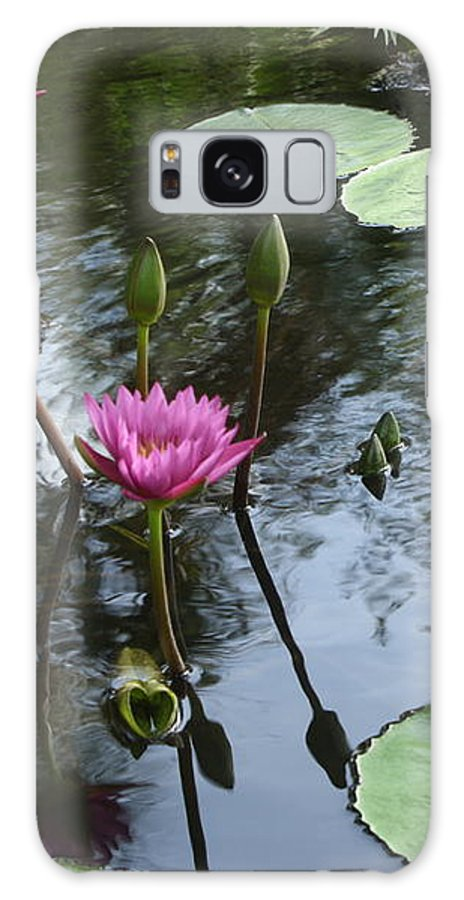 Waterlily Galaxy S8 Case featuring the photograph Lily Pond by Irina Davis