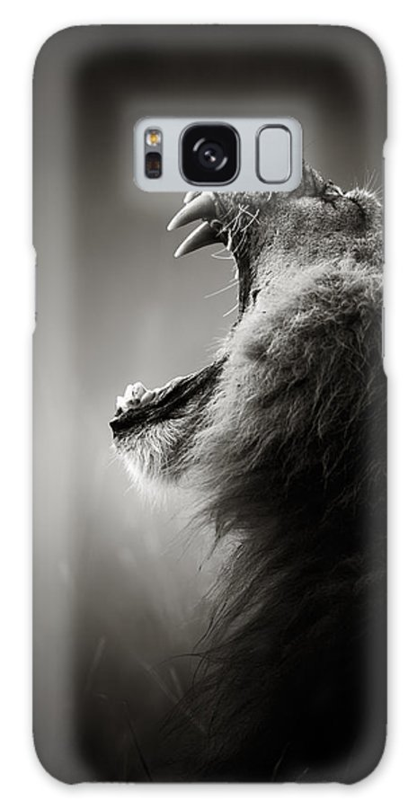 Lion Galaxy Case featuring the photograph Lion displaying dangerous teeth by Johan Swanepoel