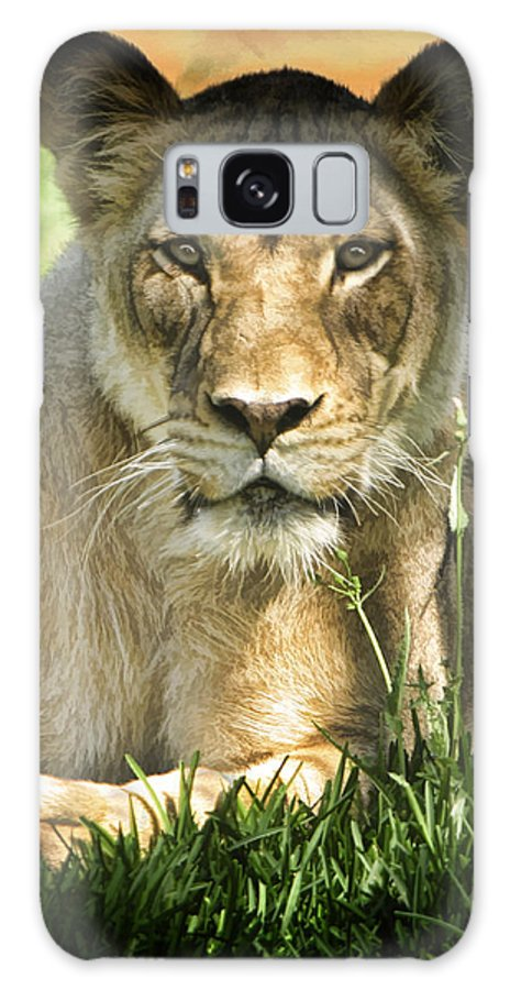 Lion Galaxy S8 Case featuring the photograph Lion In The Grass by Blake Richards
