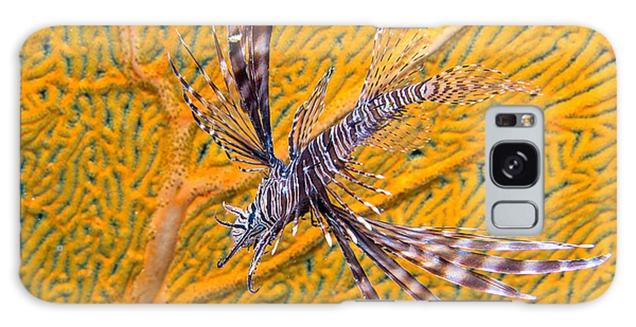 Nature Galaxy S8 Case featuring the photograph Lionfish Against Yellow Fan Coral by Gary Hughes