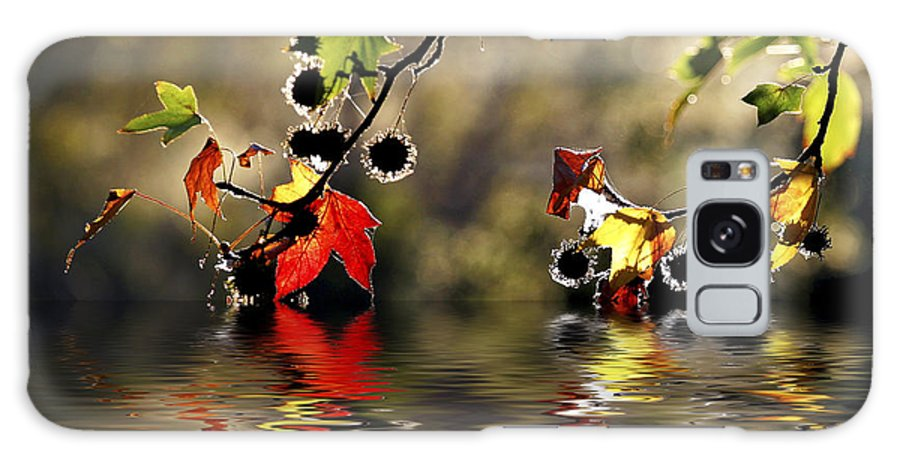 Liquidambar Maple Autumn Fall Flood Water Reflection Galaxy S8 Case featuring the photograph Liquidambar In Flood by Sheila Smart Fine Art Photography