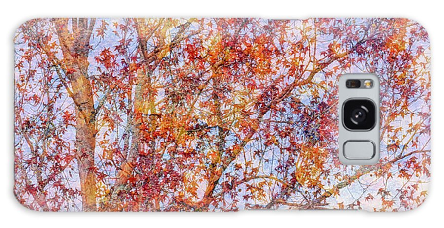 Fall Galaxy S8 Case featuring the photograph Liquidambar Square Abstract by Heidi Smith