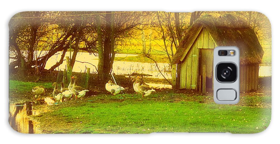 House Galaxy S8 Case featuring the photograph The Geese Have A Little House By The Flood by Hilde Widerberg