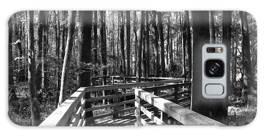 Little Turkey Island Galaxy S8 Case featuring the photograph Little Turkey Island Trail I by Sheri McLeroy