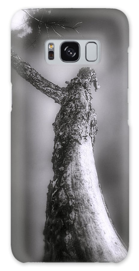 Tree Galaxy S8 Case featuring the photograph Living Dead Tree - Spooky - Eerie by Jason Politte
